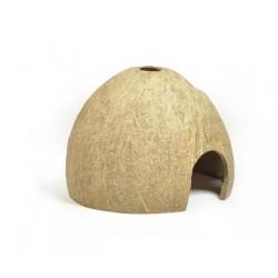 Kokosova skrupina - polovica brusena