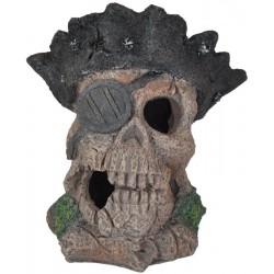 Lebka 12cm - akva. dekorácia
