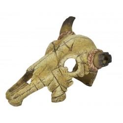 Lebka býka 20cm - akva. dekorácia